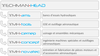 structure groupe techman-head